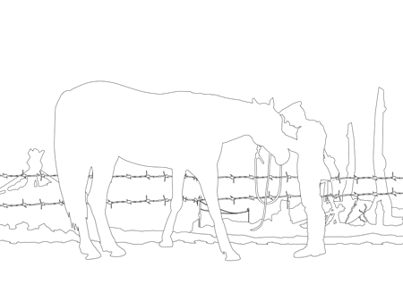 Soldier and a Warhorse Coloring Page