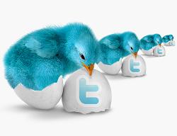 twitter logo bluebird and egg