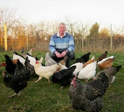 Mark with Chickens at the Farm