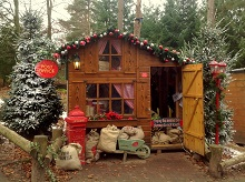 Enchanted Forest at Center Parcs Christmas Winter Wonderland