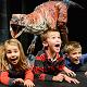 Dinosaur Zoo Live 2014