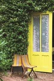 Yellowcake Door | Farrow & Ball
