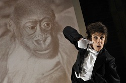 Kathryn Hunter in Kafka's Monkey