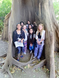 WGS's Sixth Form Gambia volunteers under the shade of a baobab tree